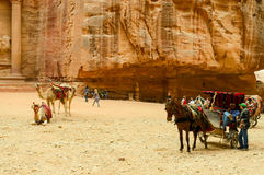Jordan, Petra. Souvenir trade, camel riding, horse carriage Stock Images