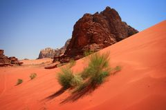 Jordan: Red Dunes Royalty Free Stock Photo