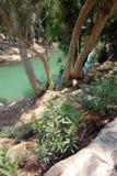 Jordan River Royaltyfri Foto