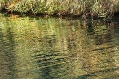 Jordan River Green Water Reflection Abstract Israël royalty-vrije stock afbeelding