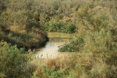Jordan River Hashemitiska konungariket Jordanien fotografering för bildbyråer