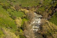 Jordan River Israel Arkivbild
