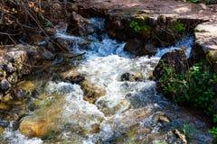 Jordan River kust i Israel royaltyfri foto