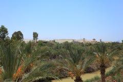 Jordan River, palmas y Jordan Landscape Imágenes de archivo libres de regalías