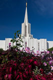 Jordan River Temple (flower foreground 1) Royalty Free Stock Images
