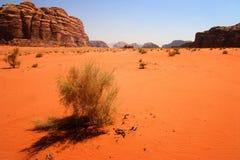 jordan rumu wadi Zdjęcie Royalty Free