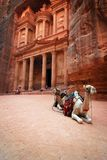 Jordan: Treasury in Petra. Treasury, one of the tombs in the ancient city of Petra in Jordan. Camels are waiting for the customers to take a ride Royalty Free Stock Images