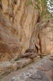 jordan Vaggar Vägen till den forntida staden Petre Arkivbild