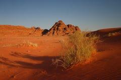 Jordan: Wadi Rum Stock Image