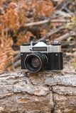Jordania, Amman, 08/10/2017 Viejo zenit de SLR de la cámara de la película con la lente Helios-44M en una rama en el bosque Fotos de archivo libres de regalías