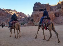Jordania, Petra - 4 de enero de 2019 Dos turistas montan camellos en las ruinas antiguas del Petra foto de archivo libre de regalías
