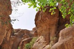 Jordania Skały Droga antyczny miasto Petre zdjęcia stock