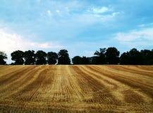 jordbruk Arkivbilder