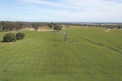 Jordbruk Arkivfoton