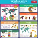 Jordbruk djurhållninginfographics Royaltyfri Fotografi