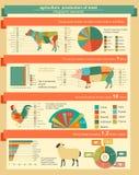 Jordbruk djurhållninginfographics, vektorillustrationer Arkivbild