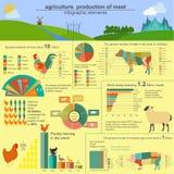Jordbruk djurhållninginfographics, vektorillustrationer Royaltyfri Bild