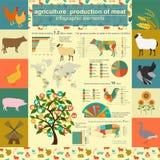 Jordbruk djurhållninginfographics, vektorillustrationer Arkivbilder