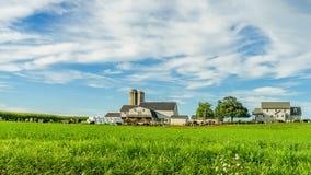 Jordbruk för fält för ladugård för Amish landslantgård i Lancaster, PA royaltyfria bilder