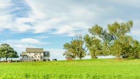 Jordbruk för fält för ladugård för Amish landslantgård i Lancaster, PA royaltyfria foton