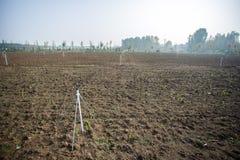 Jordbruk för Kina ` s Royaltyfri Fotografi