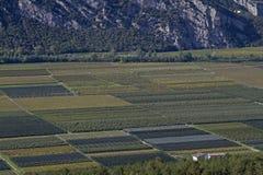 Jordbruk i den Sarca dalen Arkivfoto