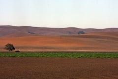 Jordbruk i USA Fotografering för Bildbyråer