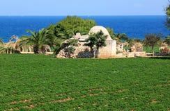 Jordbruk längs den Adriatiska havet kusten, Italien Fotografering för Bildbyråer