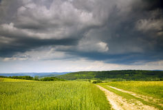 Jordbruk landskap Arkivfoto