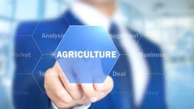 Jordbruk man som arbetar på den Holographic manöverenheten, visuell skärm royaltyfri bild