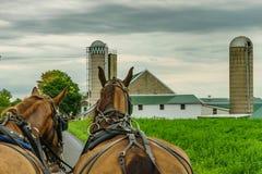 Jordbruk och slangar för fält för Amish landslantgård i Lancaster, PA Arkivfoton