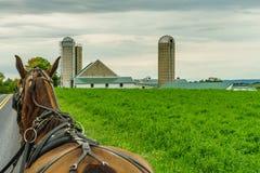 Jordbruk och slangar för fält för Amish landslantgård i Lancaster, PA Royaltyfri Bild