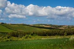 Jordbrukfält i Torres Vedras Portugal Arkivbild