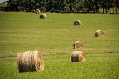 Jordbrukrullar Royaltyfri Bild
