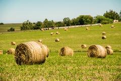 Jordbrukrullar Arkivbilder