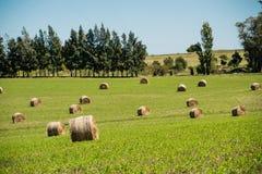 Jordbrukrullar Arkivfoton
