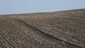 Jordbruks- bakgrund av det nyligen plogade fältet Arkivfoto