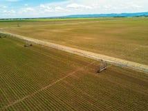 Jordbruks- bevattningsystem på kultiverad sockerbetaplantati royaltyfria foton