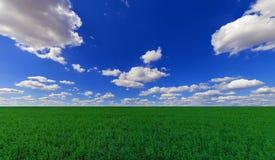 jordbruks- fält Fotografering för Bildbyråer