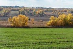 Jordbruks- fält i Europa fotografering för bildbyråer