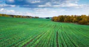 Jordbruks- fält i Europa royaltyfria foton