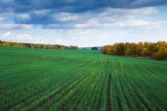 Jordbruks- fält i Europa arkivbilder