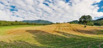 Jordbruks- fält i Tuscany royaltyfri fotografi