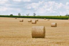 Jordbruks- fält med baler Arkivfoto