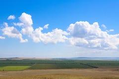 Jordbruks- fält på bakgrund för blå himmel Arkivbilder