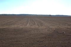 Jordbruks- fält som harvas nytt royaltyfri foto