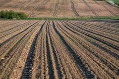 Jordbruks- fält som plogas efter skörd, sommarsäsongen, Royaltyfri Fotografi