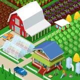 Jordbruks- fält för isometrisk lantlig lantgård med växthuset och trädgården Arkivfoton