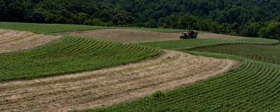 Jordbruks- haylage för rengöringsdukbaneruppställning Royaltyfri Bild