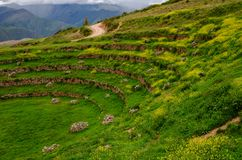 jordbruks- incamorayperu terrasser arkivfoto